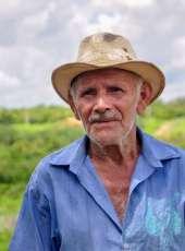 Plano Safra 2020/2021 financia R$ 601 milhões para agricultores cearenses